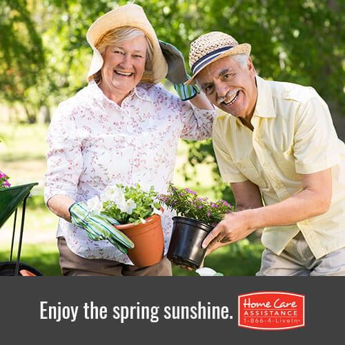 Development of Senior Seasonal Allergies
