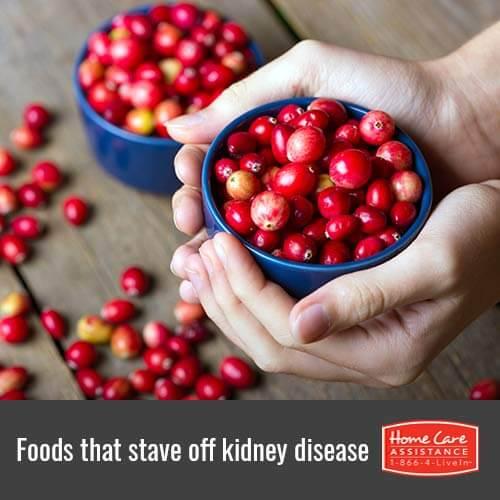 Helpful Foods that Prevent Kidney Disease in Toronto, CAN