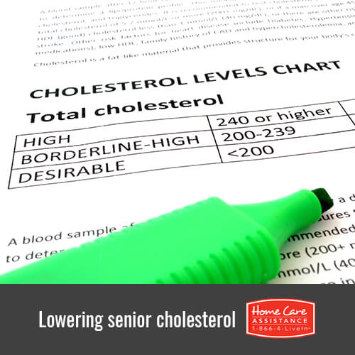 How to Help Reduce Your Loved One's Cholesterol in Toronto, CAN