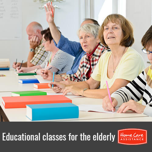 Classes That the Elderly Can Take to Expand Their Education in Toronto, ON, Canada